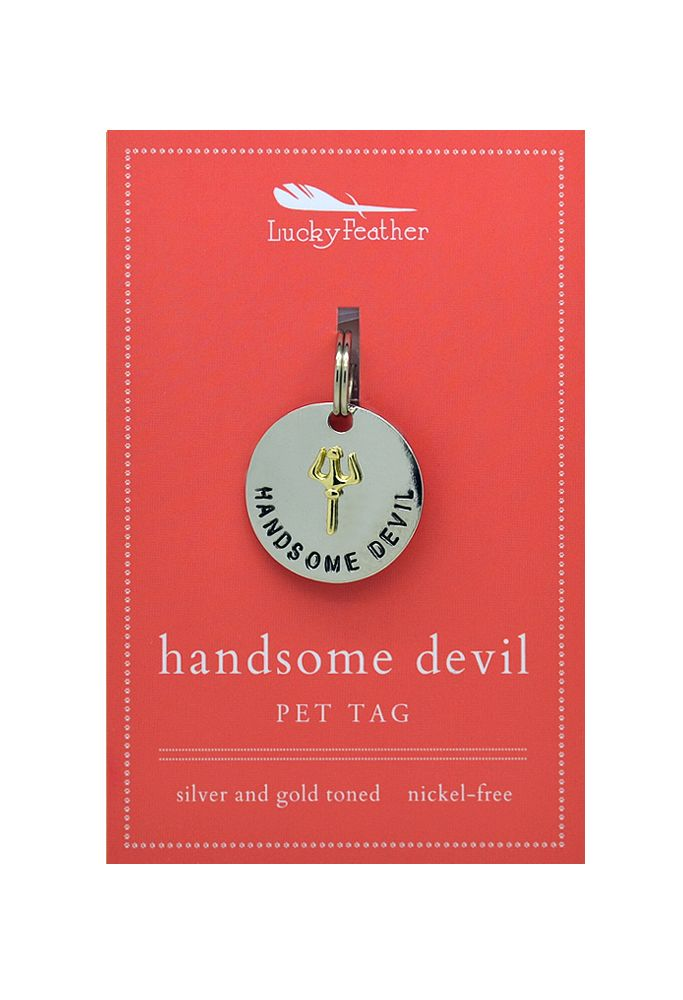 Lucky Feather Handsome Devil Collar Charm