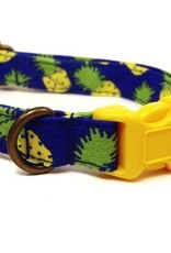 Independent Pineapple Collar XS