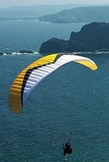 Windtech Tonic 32 - DHV 1 - 32m (95-120 kg) - 2002 (Yellow/Black)  - Used
