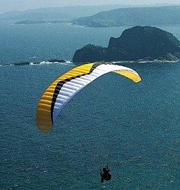 Windtech Windtech Tonic 32 - DHV 1 - 32m (95-120 kg) - 2002 (Yellow/Black)  - Used