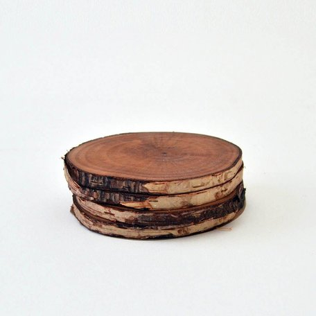 Wood Slice Coasters Set/4 - Alder