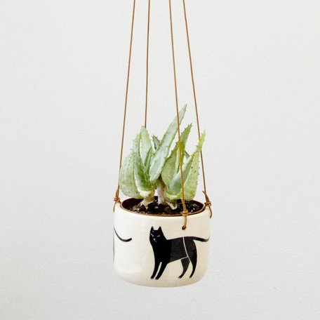 Cat Hanging Planter, hand painted