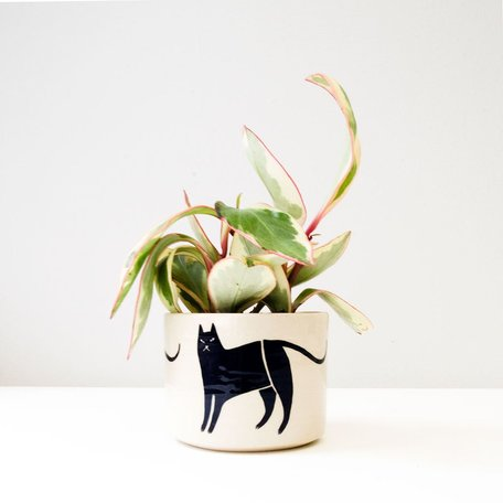 Cat Planter, hand painted