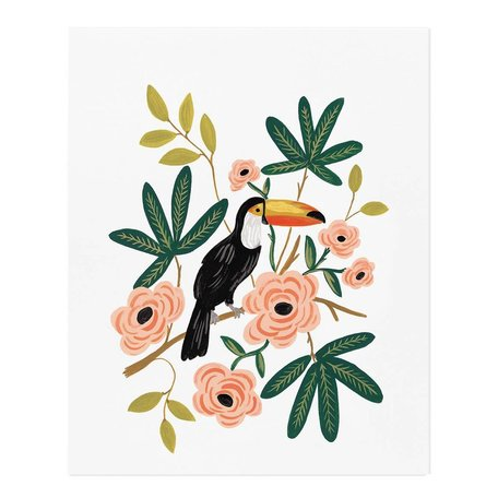 Toucan Print -16 x 20