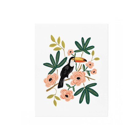 Toucan Print -8x10