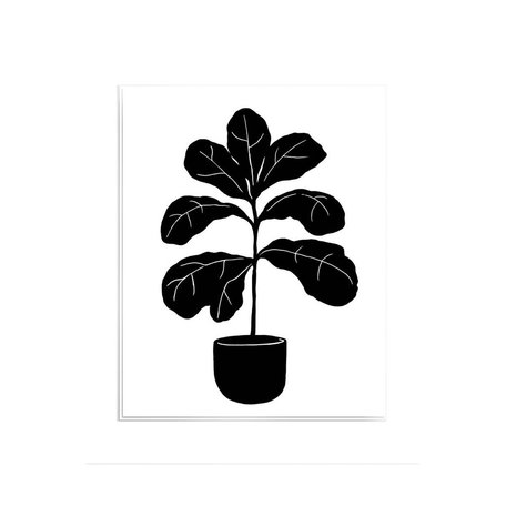 Fiddle Leaf Prinf -Assorted Sizes