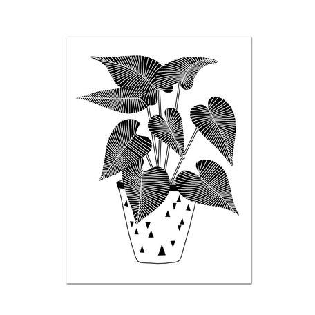 Plant 01 Art Print -12x16<br /> Pothos