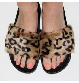 Steve Madden SOFTEY SLIPPERS