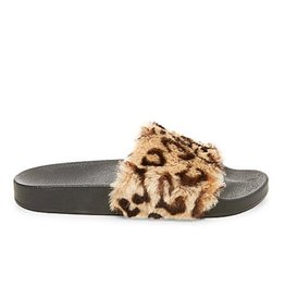 Steve Madden SOFTEY SLIPPER SHOE