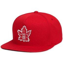 TEAMLTD Canada Lid