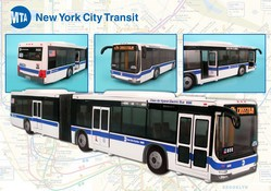 MTA Articulated Bus NYC Large