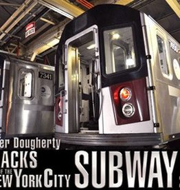 Tracks of NYC Subway 2017