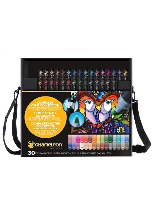 CHAMELEON BRUSH PEN SET 30PK PEN & CASE