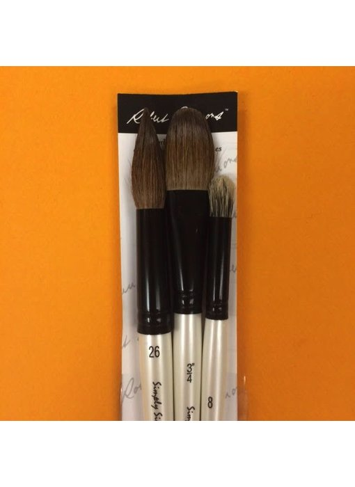 SIMPLY SIMMONS WASH AND DRY BRUSH SET