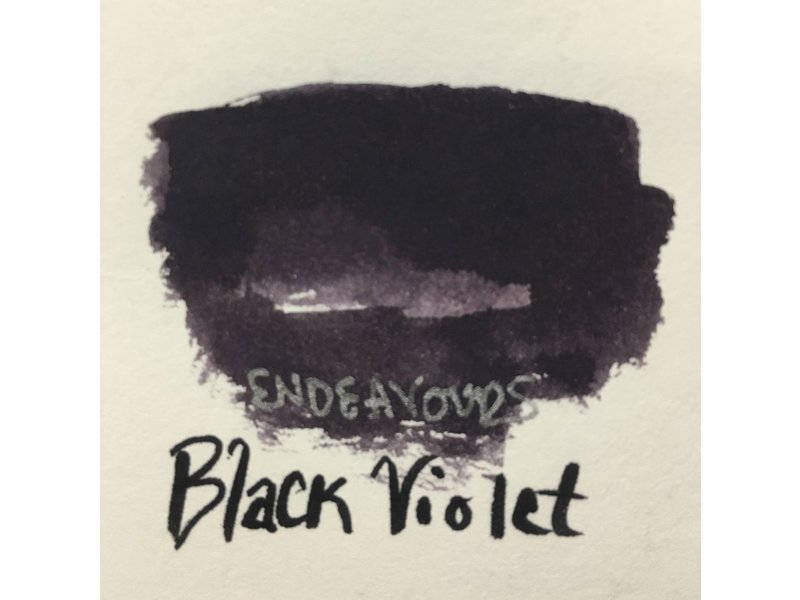ROBERT OSTER ROBERT OSTER INK 50ML BLACK VIOLET