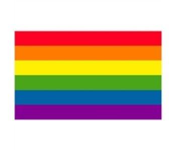 GAY PRIDE FLAG 12ÓX18Ó SMALL