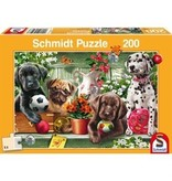 THINKPLAY SCHMIDT PUZZLE 200: PLAYFUL PUPPIES