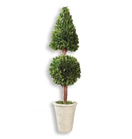 26.5 INCH BOXWOOD CONE TOPIARY