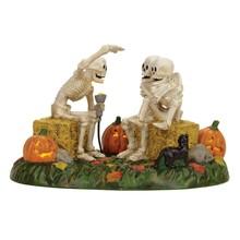 Department 56 Halloween Scary Skeleton Stories # 4056710