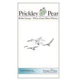 Prickley Pear Seagulls