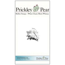 Prickley Pear Conch