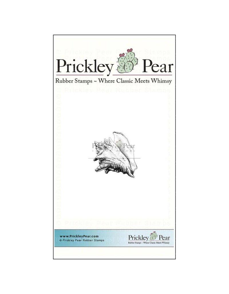Prickley Pear Conch