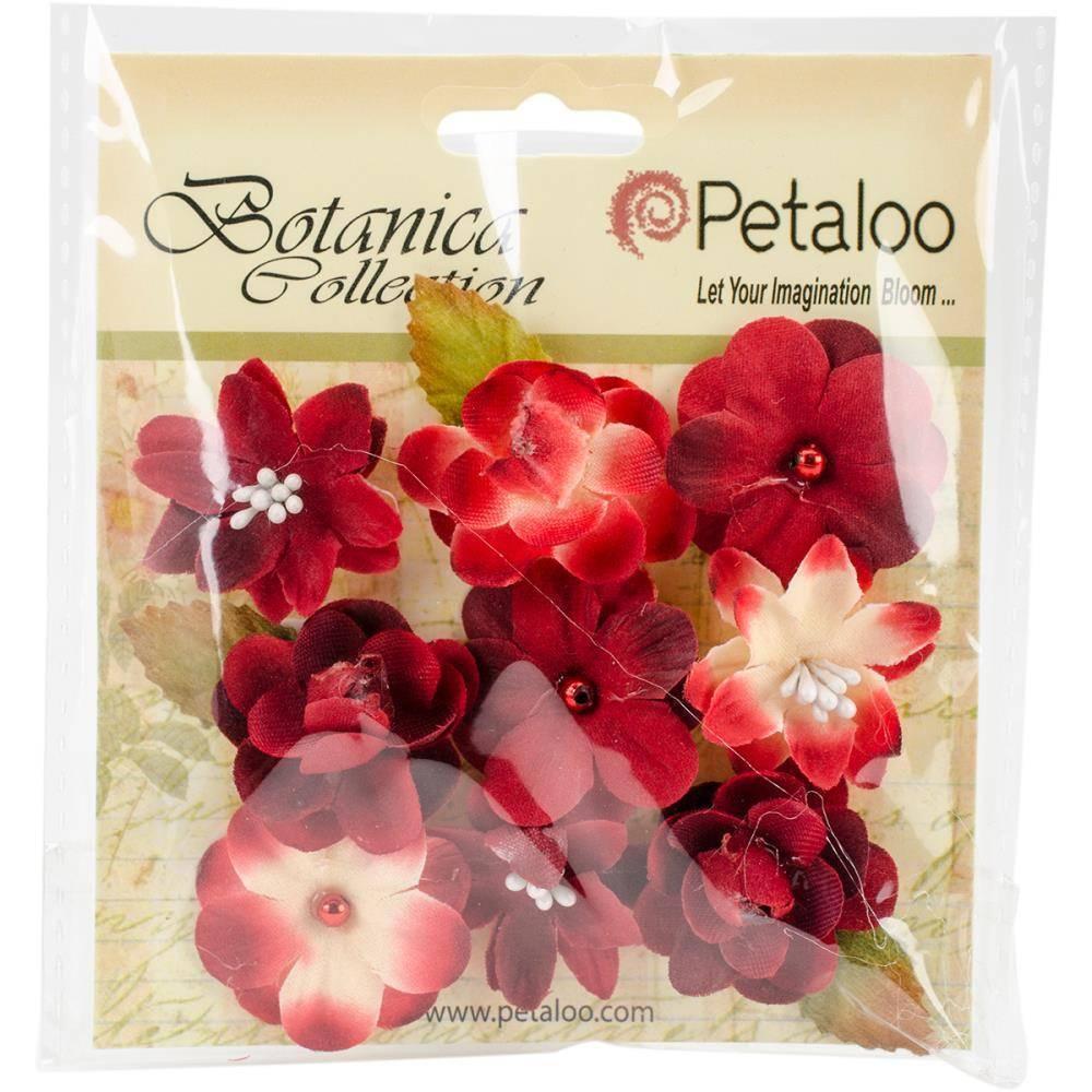 Petaloo International Baby Blooms