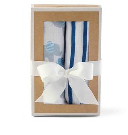 Baby Boy Layette Swaddle