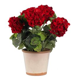 17 Inch Red Geranium in Ceramic Pot