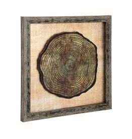 Printed On Glass Mirror - Anatomy Of A Tree V