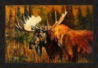Moose SN Cert 30/350