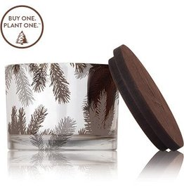 Frasier Fir Statement Candle, Medium