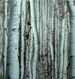 Canvas print-Birch Panels Set of 3