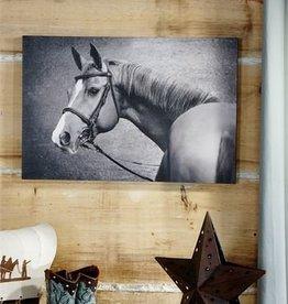 HorsePrintCanvasPrintWallDecor