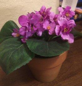 """Potted Violet Plant 7.5"""""""