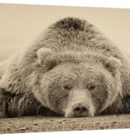 Copy of Deep Sleep 30x60 Canvas