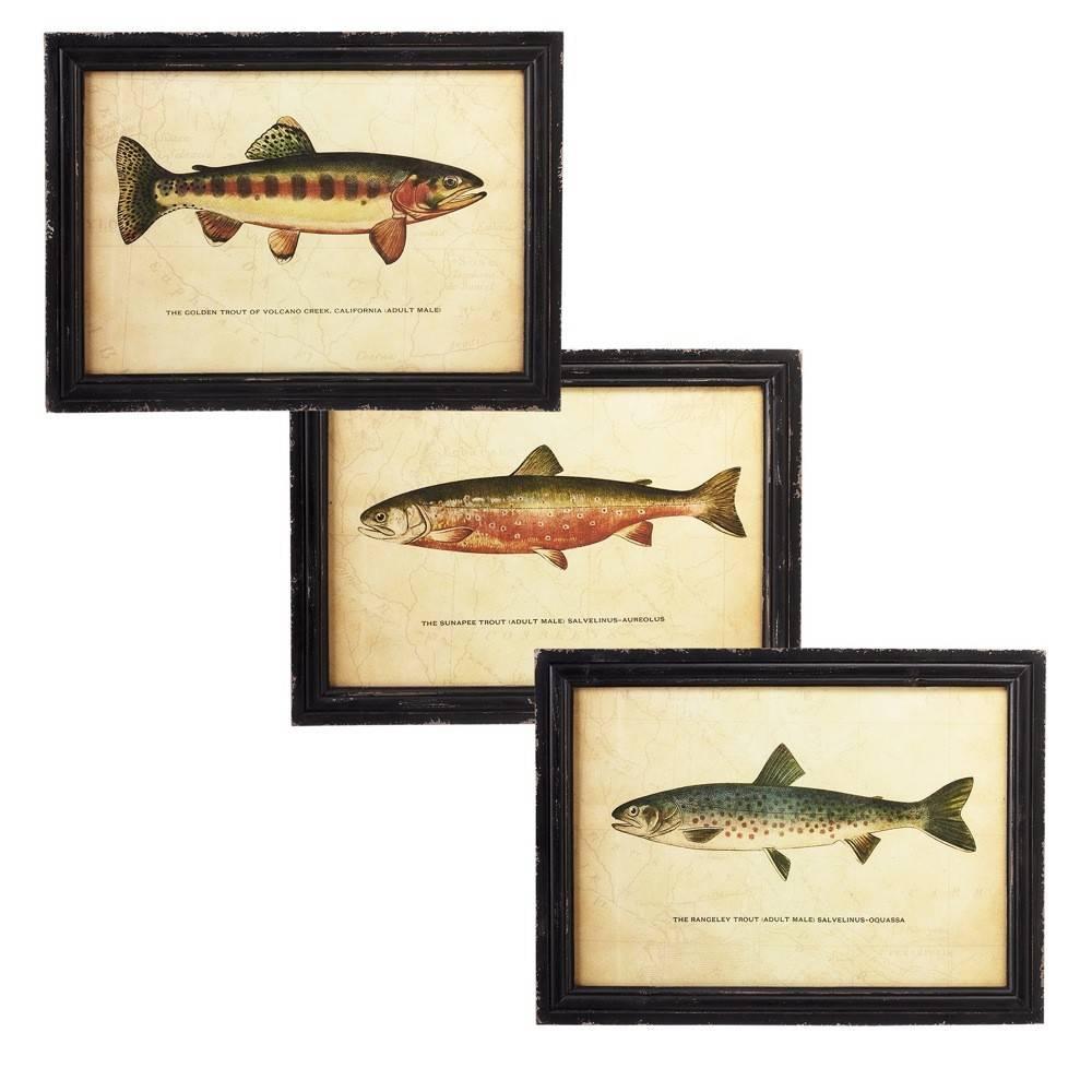 Framed Lake Fish Wall Art with Glass (3 asst) - Beckman\'s