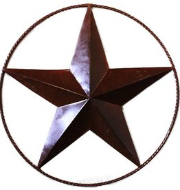 "24"" Metal Rope Star"