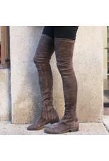ViaRoma ViaRoma Iron Suede Thigh High Boots 2318