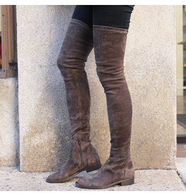 ViaRoma Iron Suede Thigh High Boots 2318