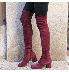 ViaRoma Wine Suede Over the Knee Low Heel 2319