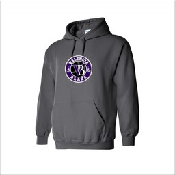 Blaze Baseball Academy Gildan Cotton Youth Hoodie Graphite - 18500B
