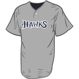 SCV Hawks Protime Two-Button League Performance Grey Jersey - 4012
