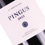 Dominio de Pingus 2013 Pingus, Ribera del Duero