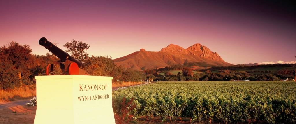 Kanonkop--South Africa's Premier Wine Estate