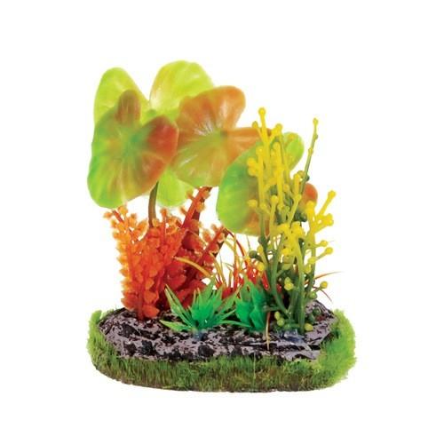 Aquaria (D) UT SM SCENE - GREEN & ORANGE LILY