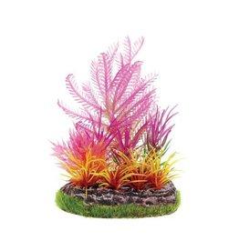 Aquaria UT SM SCENE - PINK FERN W/ FIRE GRASS