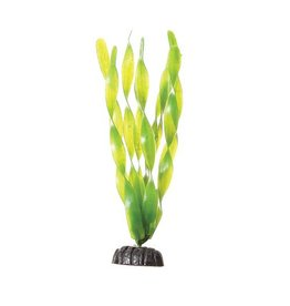 Aquaria (D) UT PP GREEN JUNGLE VAL 8IN (LC)