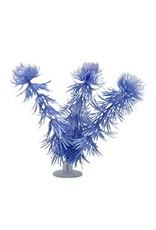 Aquaria MA Betta Kit Vibrascaper - Hornwort