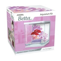 Aquaria Marina Betta Kit Flower Theme